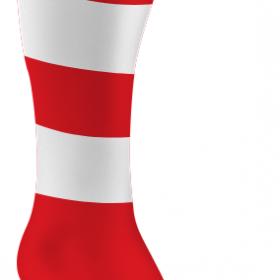 Red adn Whites Socks