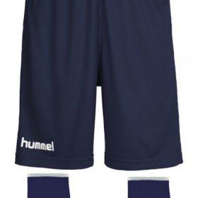 Ardee Shorts